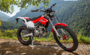 redmoto_montesa_4ride_24